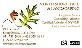 Tree Service:
