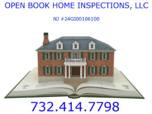 Home Inspector: